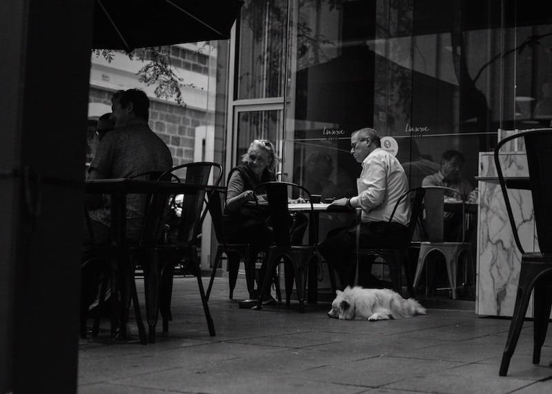 Restaurant Customer Loyalty Image 2